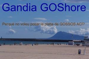 Gandia G 1