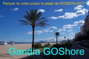 Gandia G 3